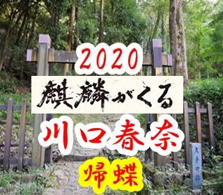 大河ドラマ2020年「麒麟がくる」の女性キャスト帰蝶。川口春奈が演じる。