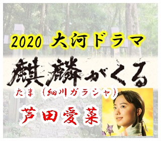 「麒麟がくる」のキャスト「たま」を演じる芦田愛菜。