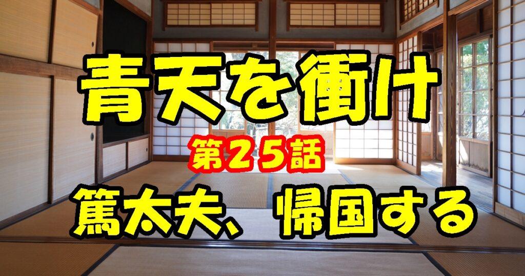 青天を衝け第25話「篤太夫、帰国する」視聴後の感想。